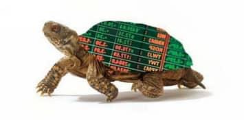 Cтратегия черепах